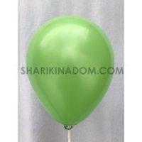 Пастель Зелёный 21 см