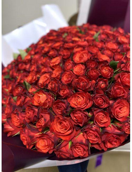 Букет Роз Fiorella - 151шт, 60см