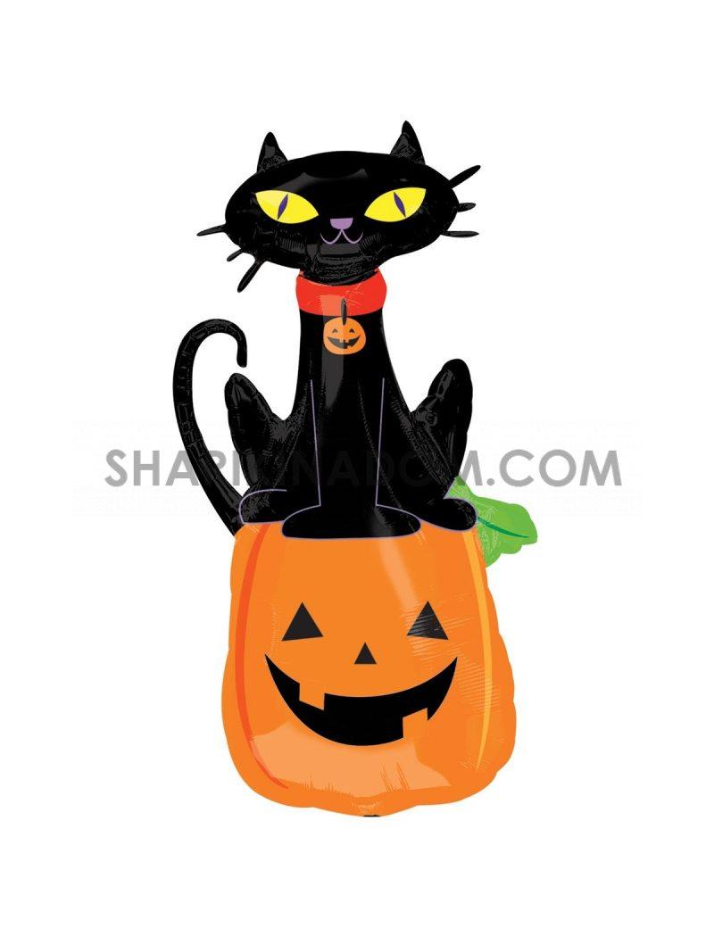 Гарбуз і чорний кіт